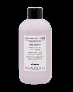 Ettevalmistav šampoon